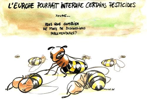 """""""Si les abeilles disparaissent, les jours de l'homme sont comptés"""" 23"""